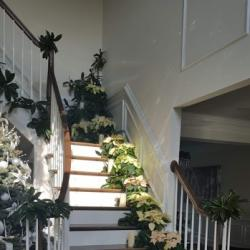 0020D9frontstairs